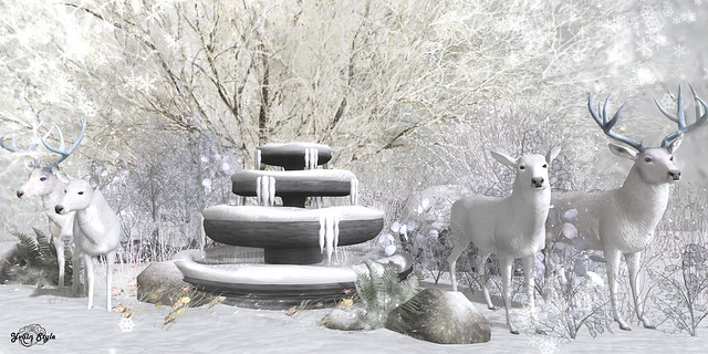 #144 - Fantastic White Deers