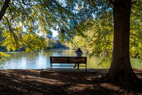 unitedstatesofamerica georgia usa piedmontpark architecture atlanta skyline city cityscape unitedstates 2019 urban november