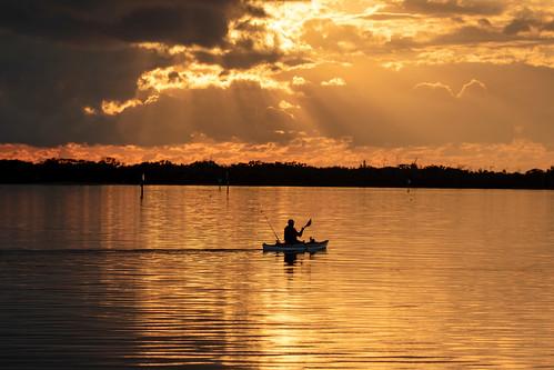 outdoor seaside dennis adair shore sea sky water nature wildlife 7dm2 7d ii ef100400mm ocean canon florida bird