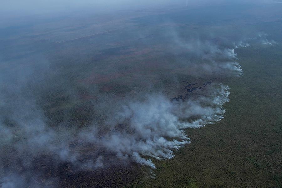 Cengal區濃煙顯示火勢嚴重。