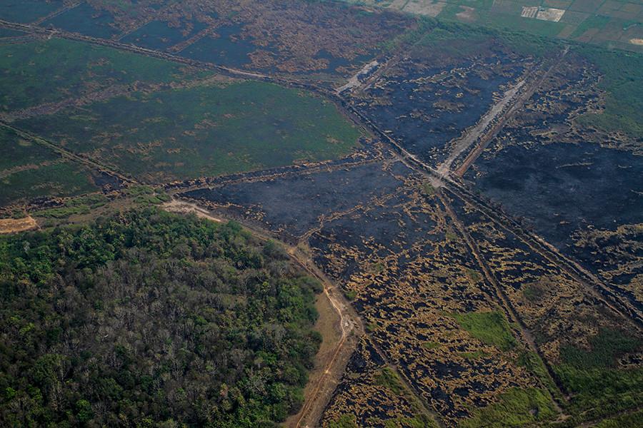 Ogan Ilir區此處燒過的土地是種植油棕和其他農作物的小農戶所有。