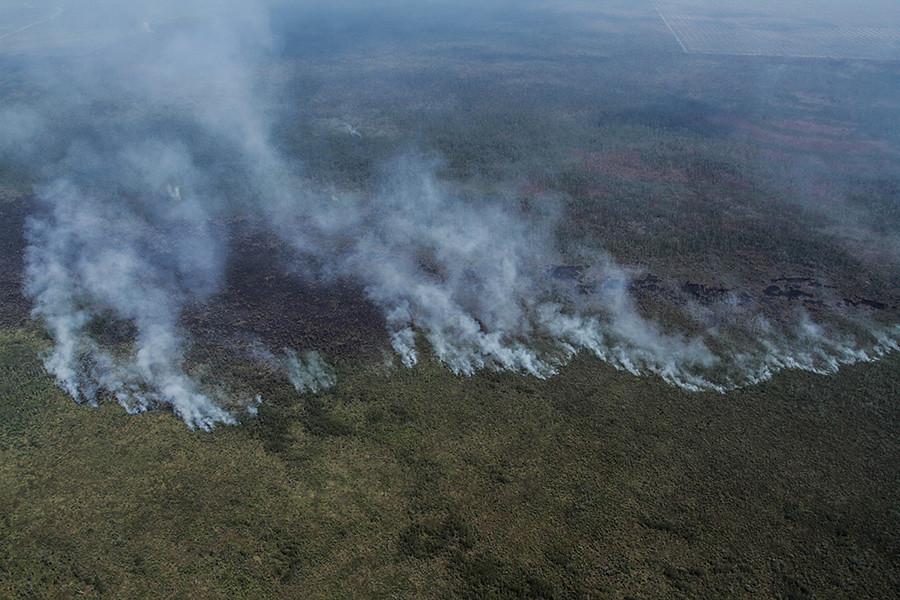 Cengal區大火肆虐泥炭地,留下黑色焦土。