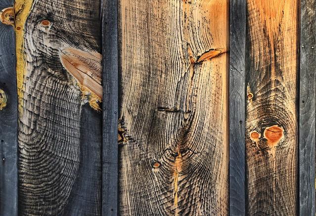 Beauty of Wood Grain