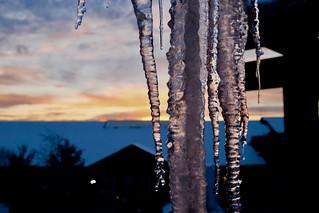 Traverse City Ice