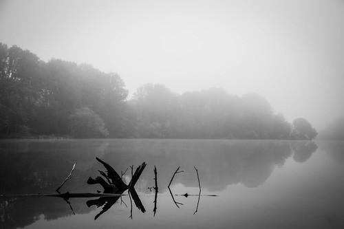 water reflection landscape fog bw lakeelkhorn columbia nature maryland unitedstates
