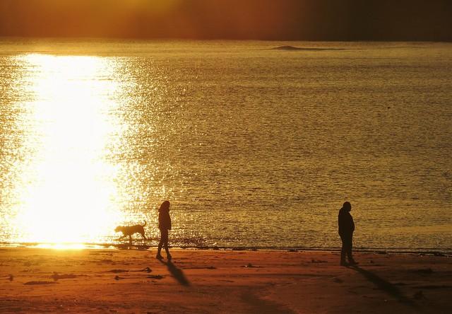 Sunset Dog Walkers - Newbiggin Beach