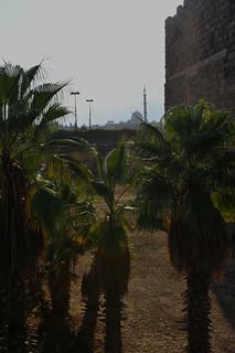 Bosra, Syria 2011 451
