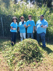Hawaii Electric Light at the Hawaii Wildlife Center — Oct. 5, 2019: Volunteers show their aloha next to a collection of weeds, vines and overgrowth compiled throughout the day.