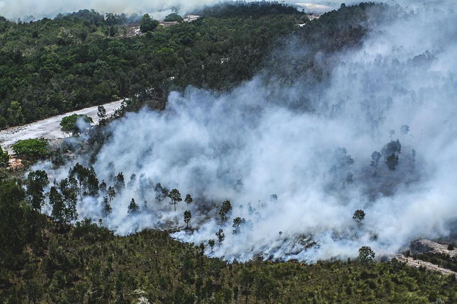 Cengal區的泥炭地上大火燃燒,冒出大量濃煙。