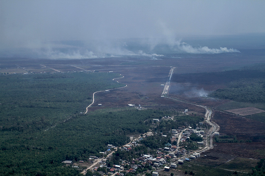 Pedamaran區大部分土地已變成油棕園。雖然非法,但長期以來,燃燒一直是清理土地最便宜的首選辦法。