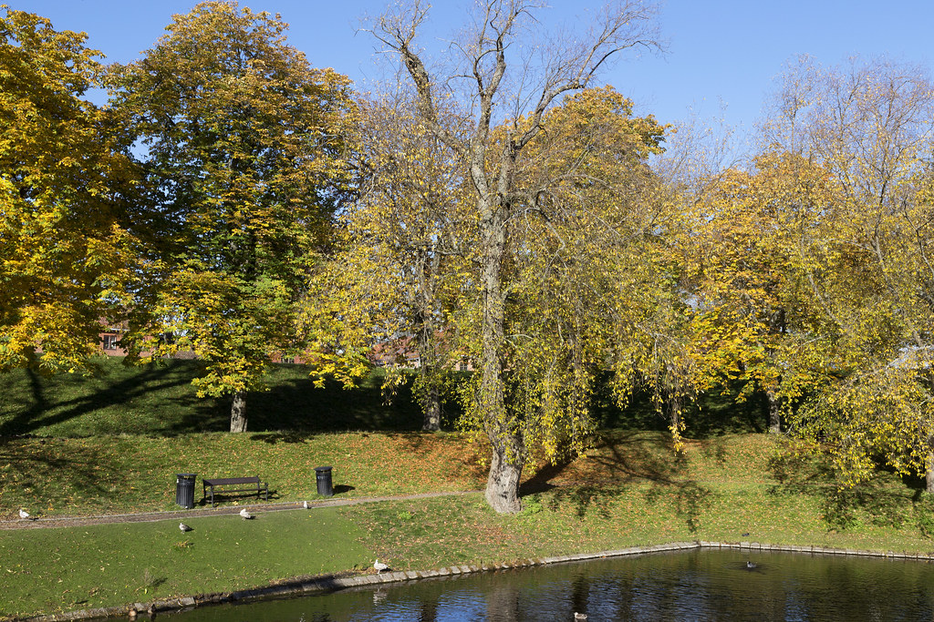 Golden_October 2.17, Fredrikstad, Norway