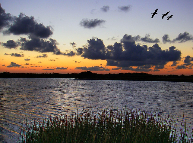 Evening Settles In - Mustang Island, Texas
