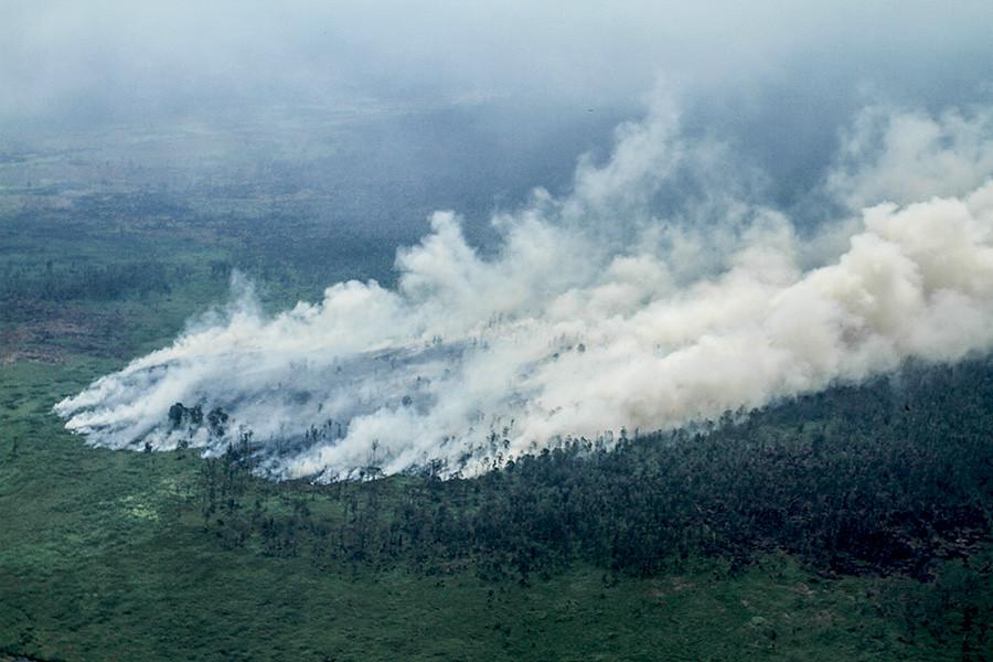 強風和異常乾燥的旱季使大火迅速蔓延。