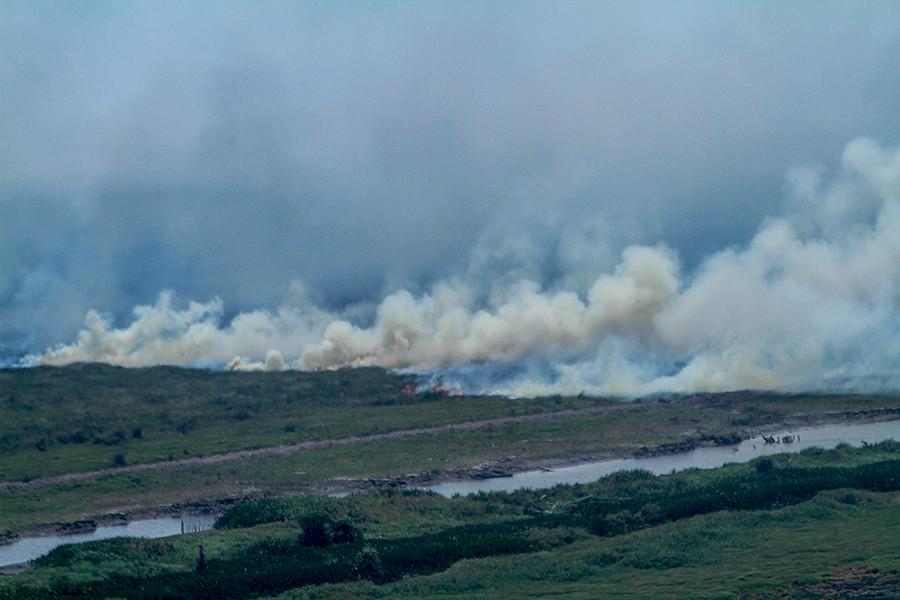 Pedamaran區泥炭地大火使濃霧籠罩。