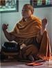 Saffron Monk 2