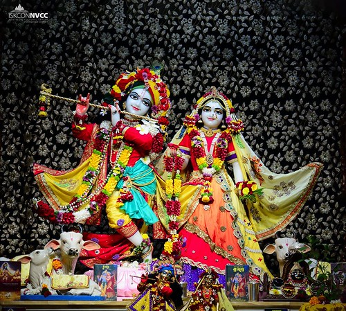 ISKCON Pune NVCC Deity Darshan 19 Nov 2019