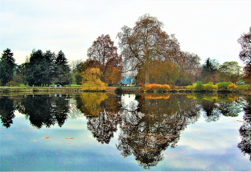 Kew Gardens Lake - London.