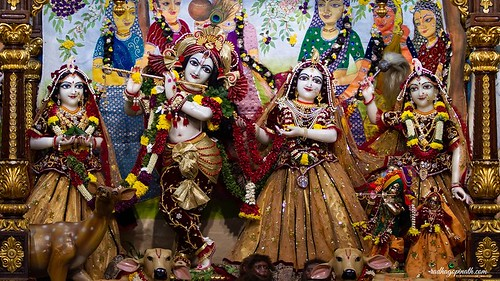 ISKCON Chowpatty Deity Darshan 19 Nov 2019