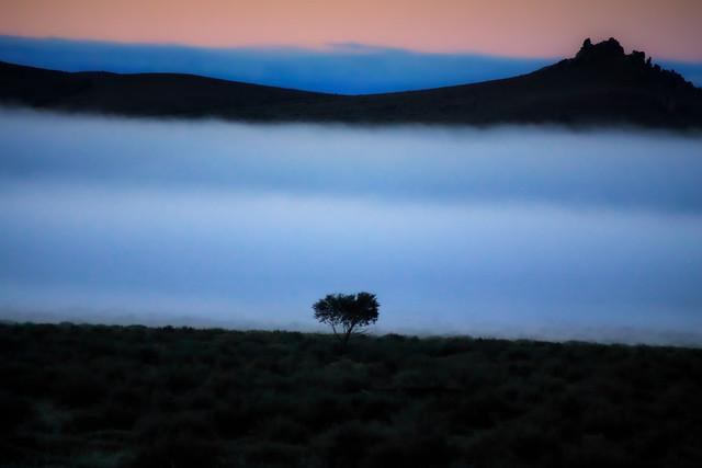 A Dawn Mongolian Landscape