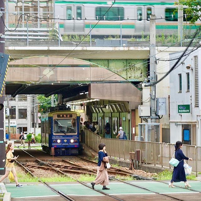 #都電荒川線 #路面電車 #都電 #romendensha #Japan #日本 #東京 #Tokyo #toden #todenarakawaline #LíneaTodenArakawa #도덴아라카와선 #tram #大塚駅 #OtshkaStation #早稲田 #Waseda #Otsuka #Ohtsuka #文京区 #Bunkyōku #Bunkyoku #Downtown #JapaneseDownTown #下町 #大塚 #駅 #station