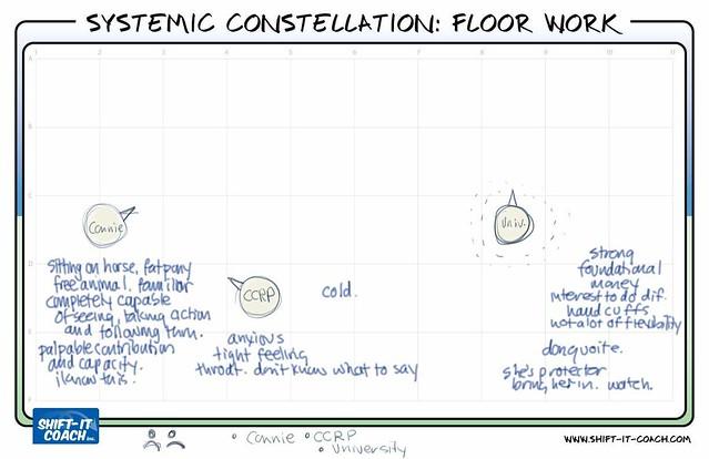 Systemic Constellation Floor Work 2