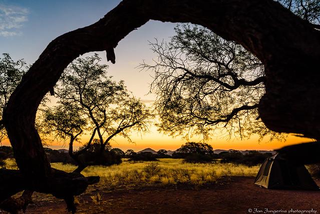 Camping in the savannah
