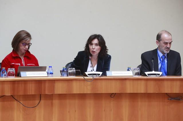 Comparecencia de Mar Pereira na Comisión de Economía, Facenda e Orzamentos do Parlamento de Galicia
