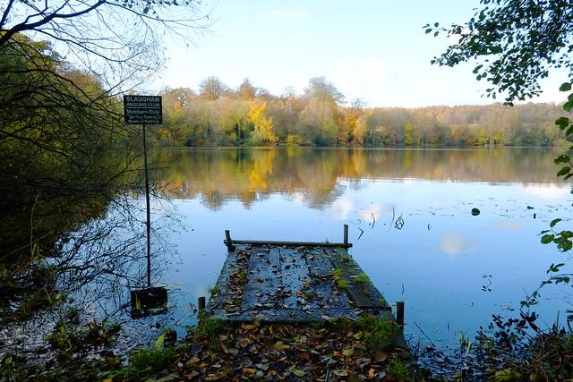 Autumn Walk in Sussex
