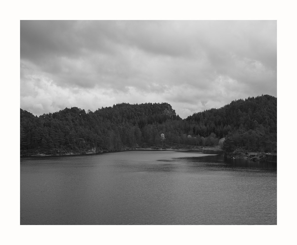 Overview of lake and woods, black and white photograph