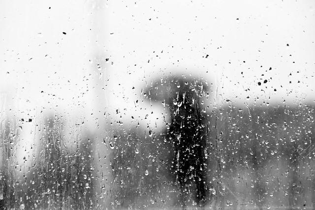 Rainy morning through the glass