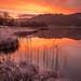 "<p><a href=""https://www.flickr.com/people/116211054@N02/"">jasonhudson2</a> posted a photo:</p>  <p><a href=""https://www.flickr.com/photos/116211054@N02/49091181067/"" title=""Rydal water sunrise""><img src=""https://live.staticflickr.com/65535/49091181067_253d72d5ec_m.jpg"" width=""205"" height=""240"" alt=""Rydal water sunrise"" /></a></p>  <p>A bit of a mega sunrise this morning colour wise.</p>"