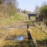 Dudley Port Swamp
