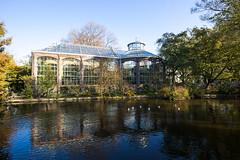 Hortus botanicus, amsterdam.