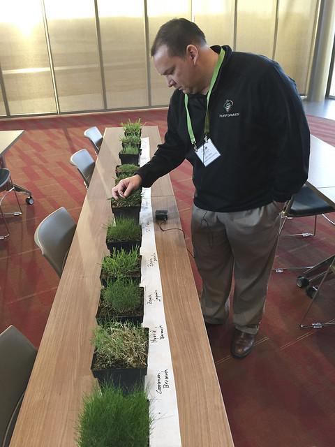 Turfgrass Short Course