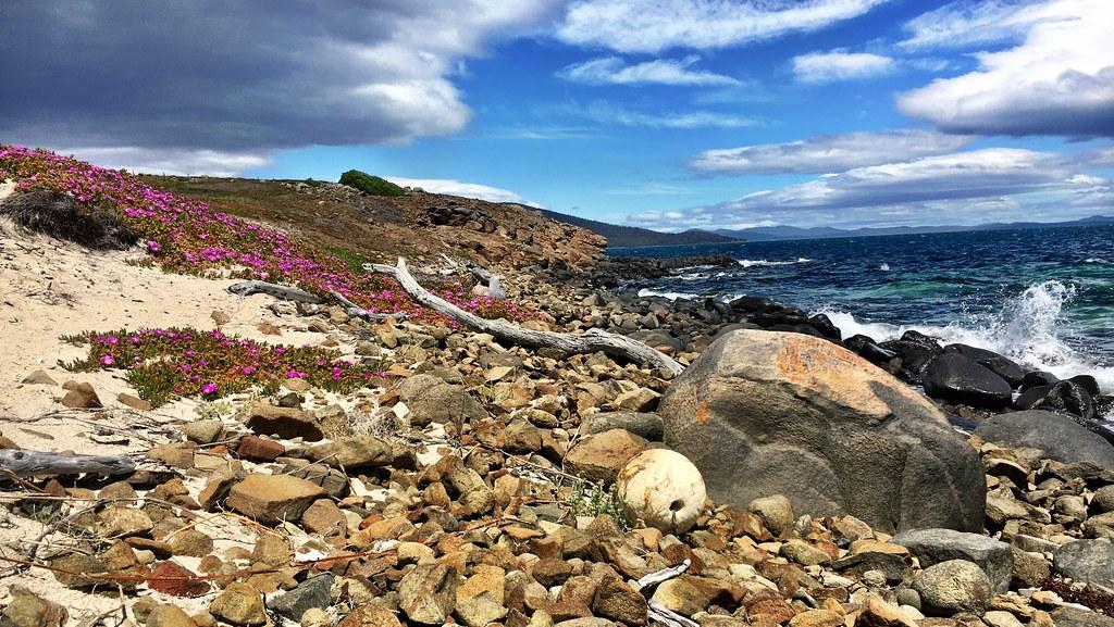 Shoreline. Maria Island.