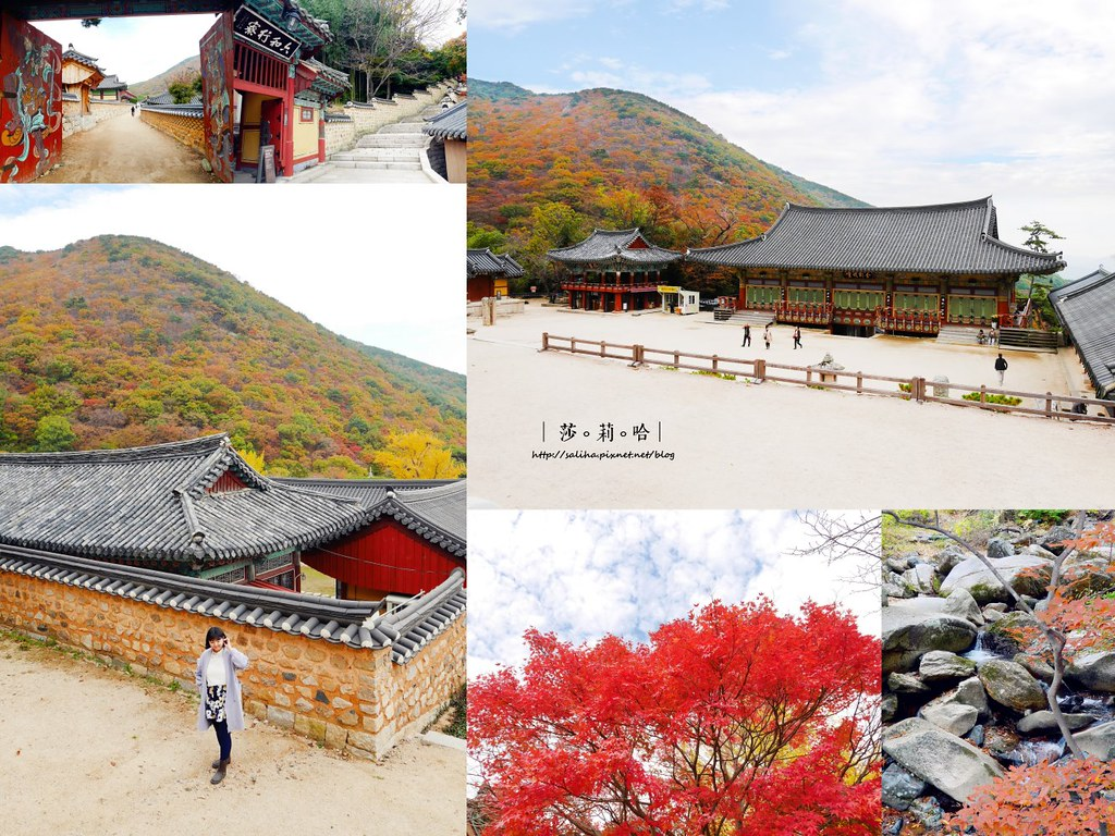 韓國釜山旅遊賞楓景點推薦梵魚寺爬山踏青路線