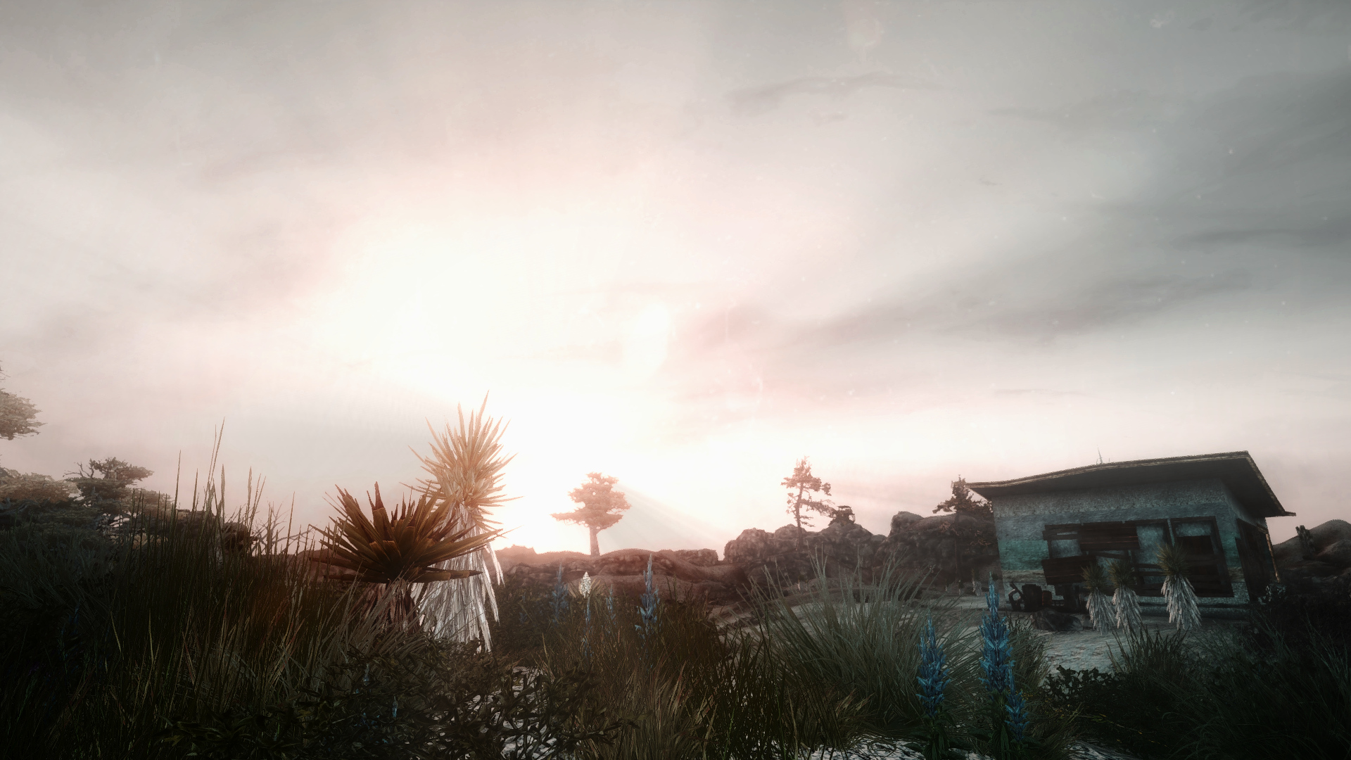 Fallout Screenshots XIV - Page 9 49093095287_fc89516f0b_o