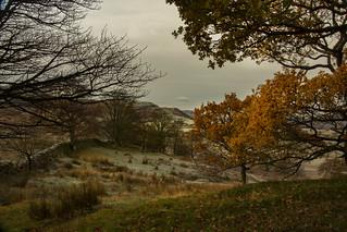 Autumn colour around Tewet Tarn