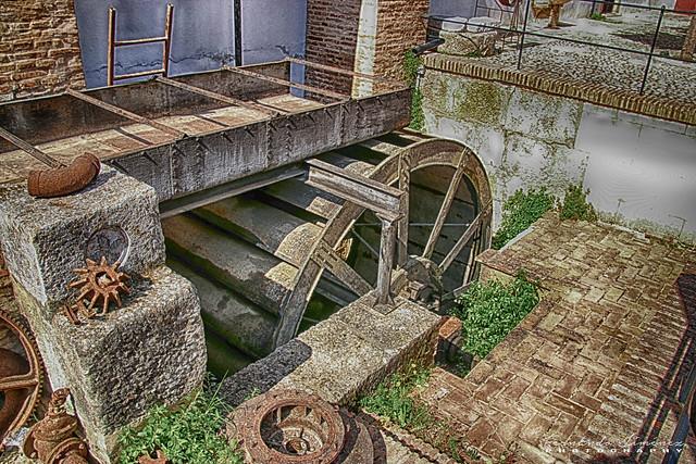 La noria del molino/The mill wheel