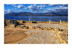Greek/Roman Mosaics