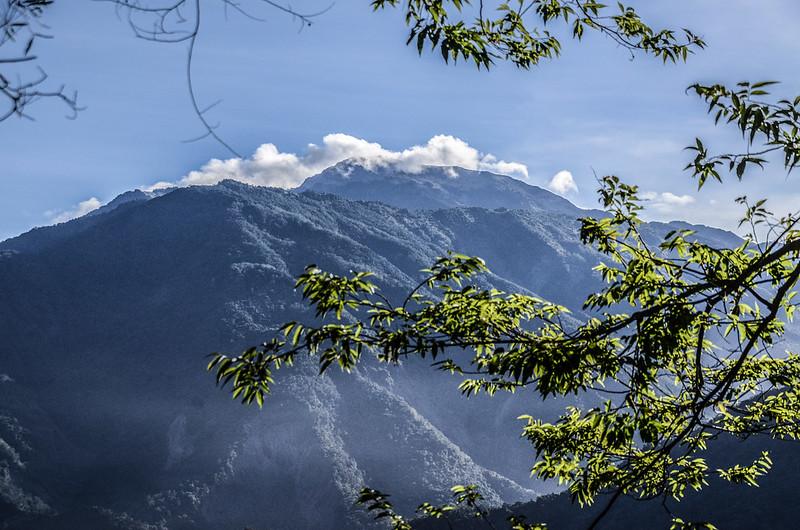 西良母嵐山稜線(H 1020 m)東望鐵本山、關山