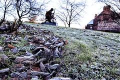 War Memorial hill frosty