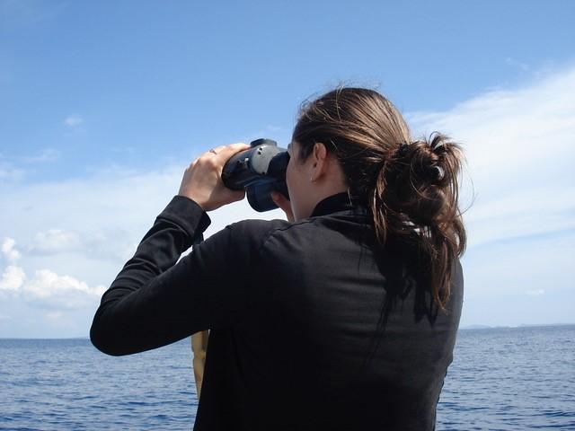 觀測施工現場周圍的鯨豚觀察員。圖片提供:Maja Nimak-Wood