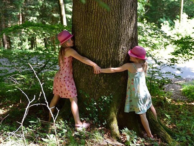 giornata-nazionale-degli-alberi-1280x796