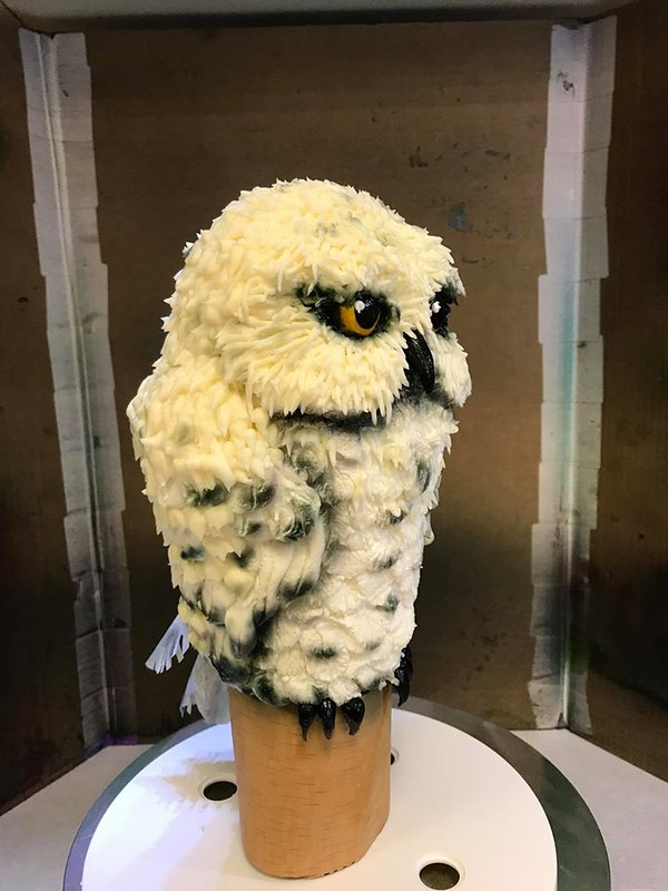 Owl Cake by Ollie's-Cakes