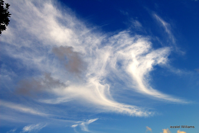 Cloudscape and Air Element - They are Here ...Breath IN the Chi  IMG_2325