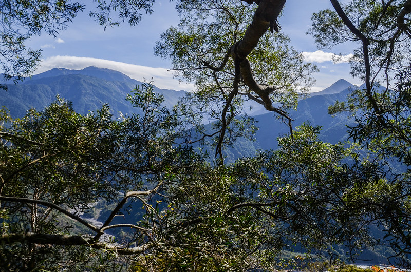西良母嵐山稜線(H 1320 m)東望群山 2