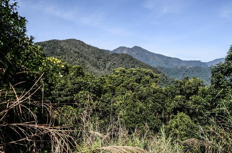 西良母嵐山山頂北望新望嶺