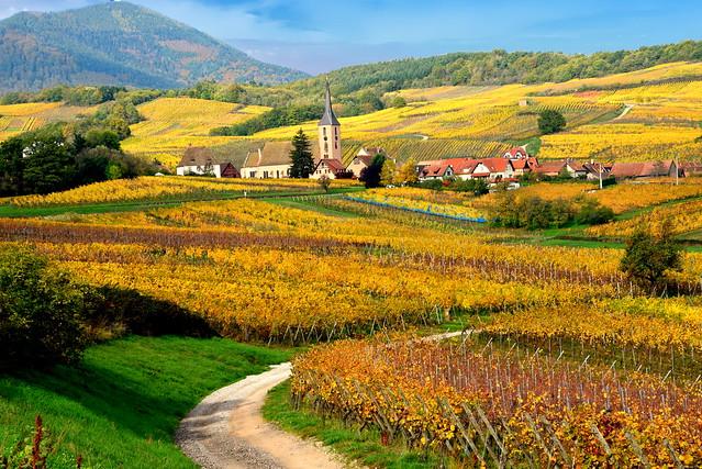 Blienschwiller (Alsace, F)