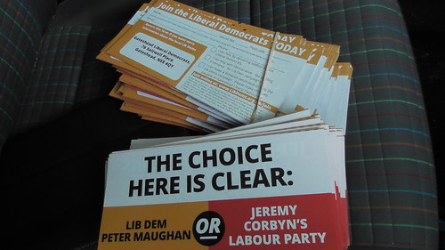 Gateshead Lib Dem leaflets Nov 19